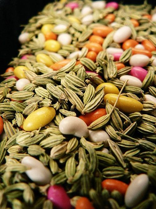 HEALTH & BEAUTY BENEFITS: FENNEL SEEDS EDITION