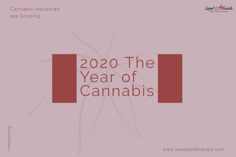 2020 The Year For Cannabis